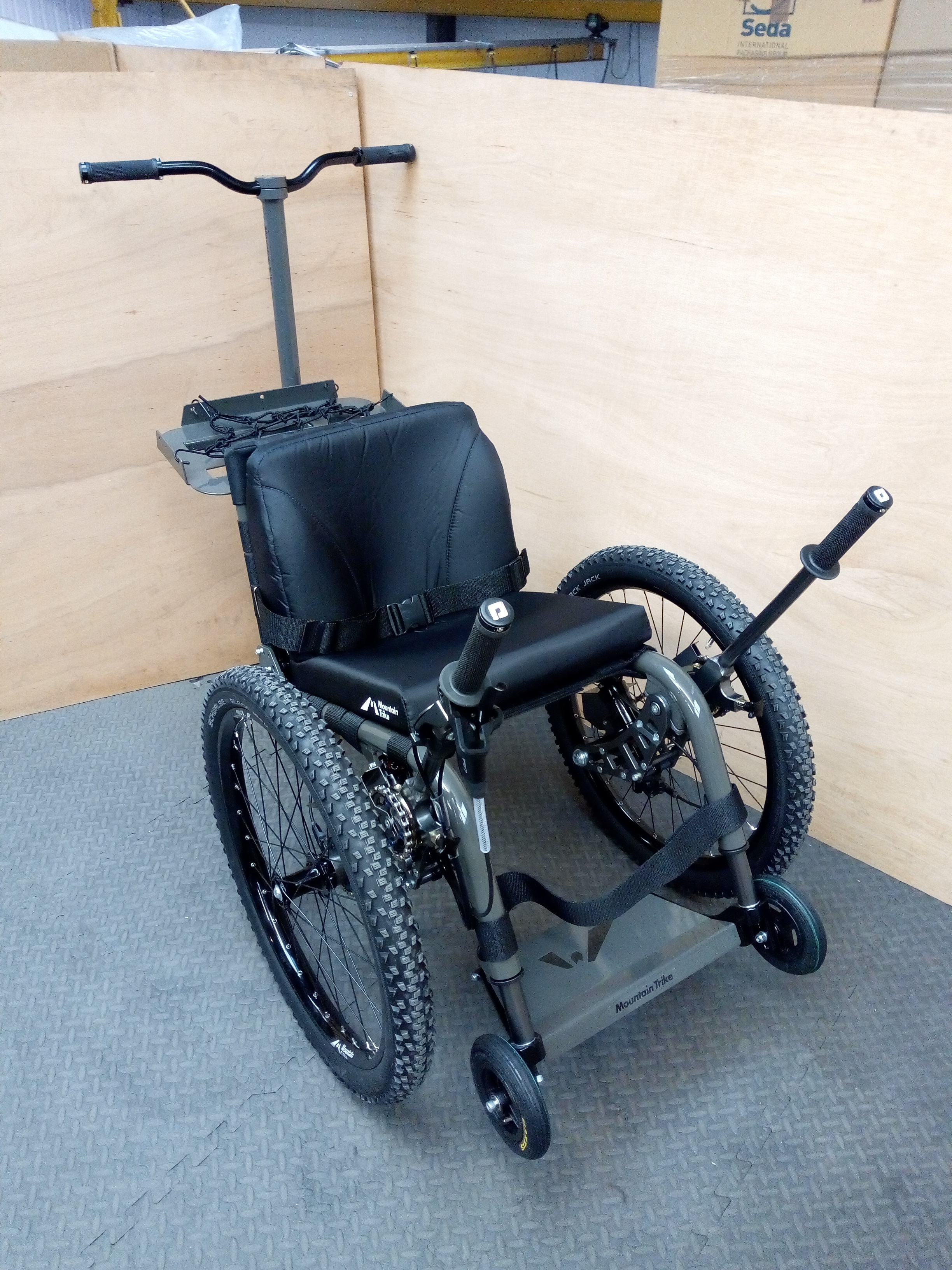 Pioneer Medical Mountain Trike demo model