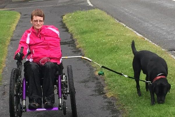 Wheelchair dog walking lead set