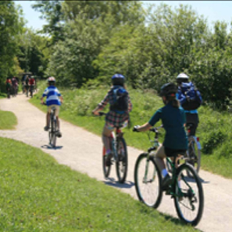 Forest of Dean - Pedal a bike away